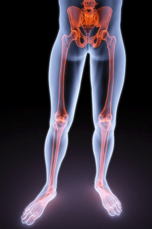 thigh: male feet under the X-rays. 3d image. Stock Photo