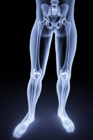 buttocks: male feet under the X-rays. 3d image. Stock Photo