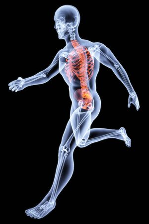 agility people: Running Man by X-rays. bone torso are highlighted in red.