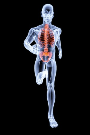 Running Man by X-rays. bone torso are highlighted in red. photo