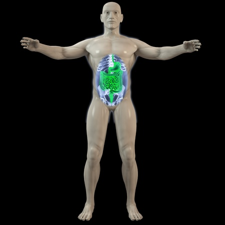 the inner man by X-rays. 3d image. photo