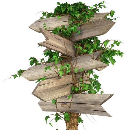 crossroads: old wooden pointer overgrown in ivy. isolated on white. including clipping path Stock Photo
