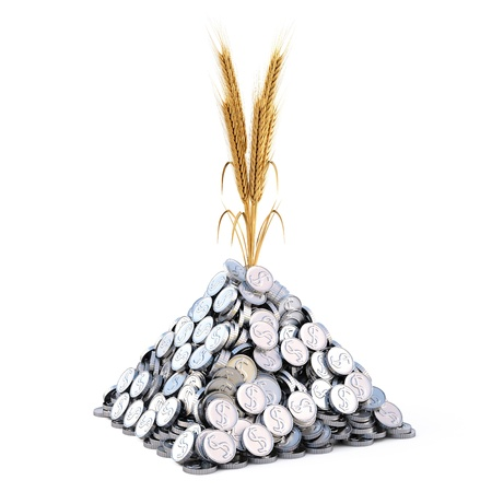 pile of coins: golden spikes grow from a pile of silver coins isolated on white.