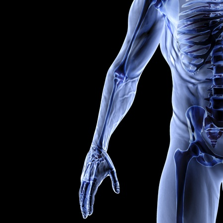 skeleton x ray: Man Stock Photo