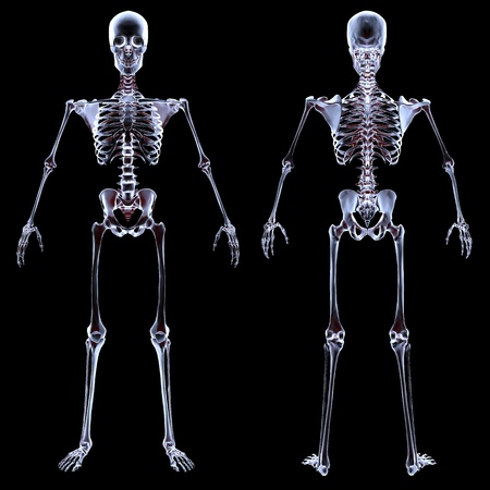 esqueleto humano bajo los rayos X. aislado en negro. Foto de archivo