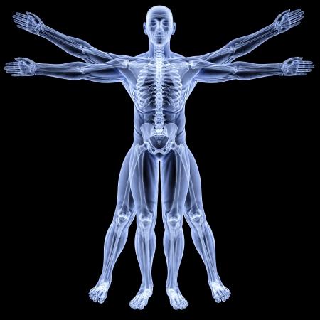 hombre de Vitruvio bajo rayos X. aislado en negro.