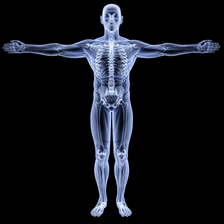 scheletro umano: corpo maschile sotto i raggi X. isolato su nero