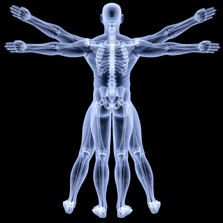 uomo vitruviano: l'uomo vitruviano in raggi-X. isolato su fondo nero.