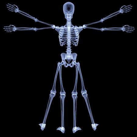 uomo vitruviano: uomo vitruviano sotto i raggi X. isolato il nero.