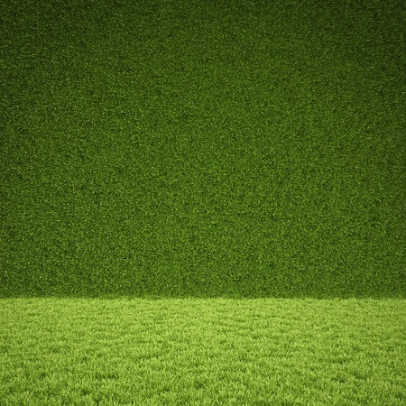 grass: floor and wall of green grass.