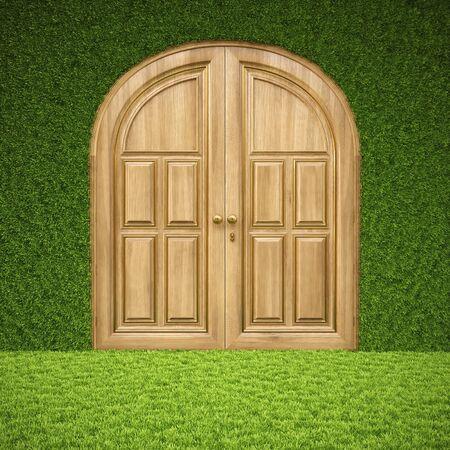 luxury wooden door in the inter from grass. Stock Photo - 13415877