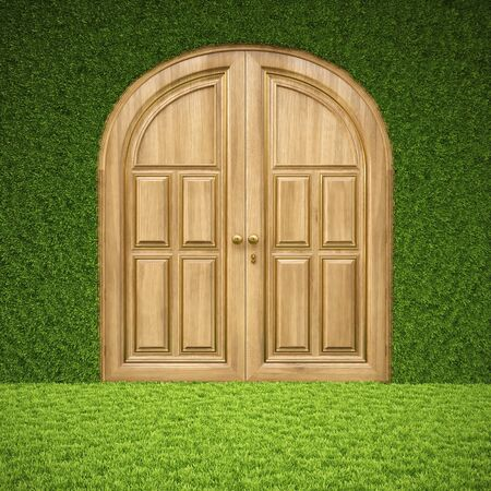 luxury wooden door in the interior from grass. photo
