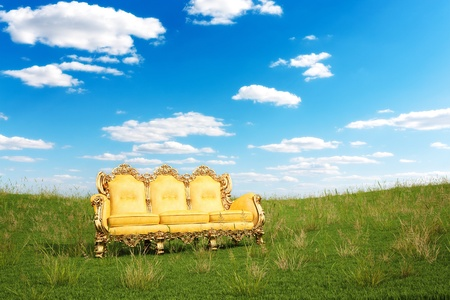 empty chair: luxurious couch on a green meadow.