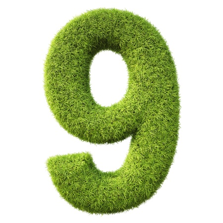numeration: numbers from the green grass. isolated on white.
