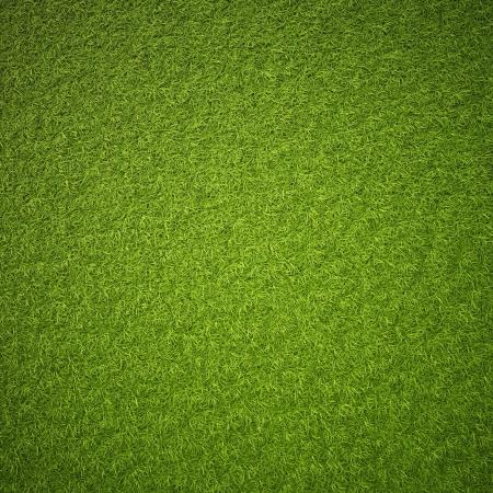 greens: Green grass field background texture. Stock Photo