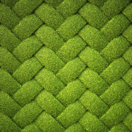 rattan from grass. background texture. photo
