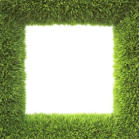 frame gemaakt van groen gras Stockfoto