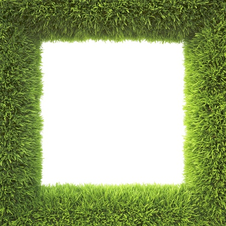 frame made of green grass photo