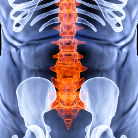 torso men under X-rays. backbone is highlighted in red. Stock Photo - 14935283