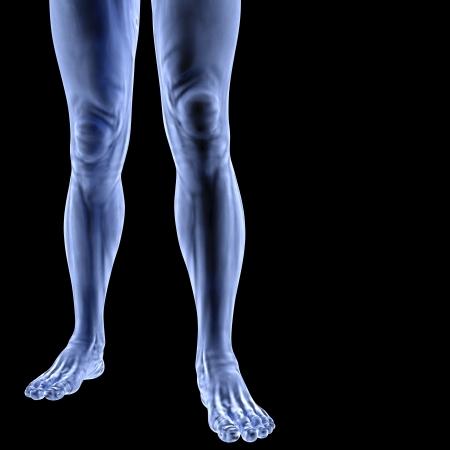Menselijke voeten onder x-stralen. geïsoleerd op zwart.