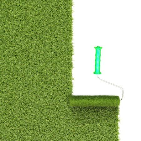 grass land: roller draws the field from the green grass.