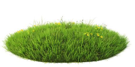 白い背景に分離された天然芝アリーナ