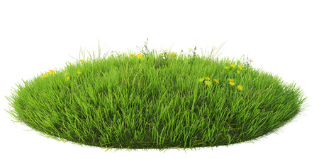 Natuurlijk gras arena op een witte achtergrond