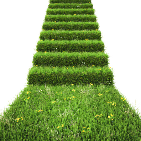grass isolated: stairway covered with green grass. isolated on white background.