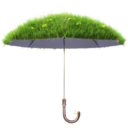 grass isolated: umbrella covered with green grass. isolated on white background.