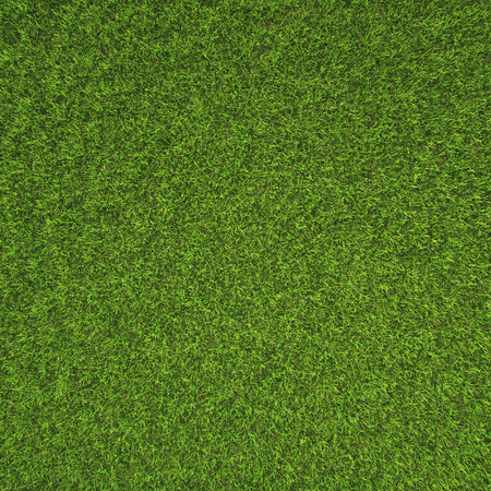 Beautiful green grass texture from golf course Banque d'images