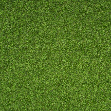 Beautiful green grass texture from golf course Standard-Bild