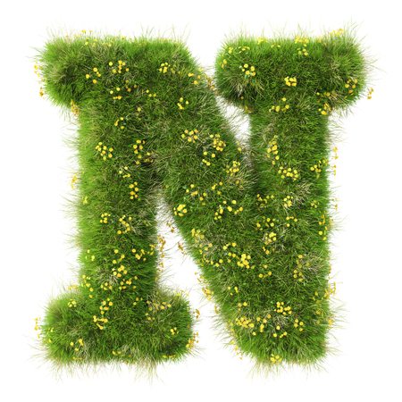 Alphabet from the green grass and flowers. isolated on white. Stock Photo
