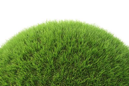 Groen gras heuvel. Geïsoleerd op wit. 3D-afbeelding.