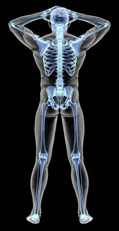 man back pain: mans body under X-rays. 3D illustration.