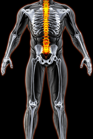 mans body under X-rays. spine bones are highlighted in red. 3D illustration.