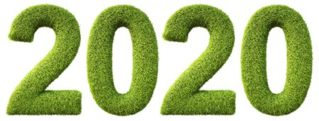 new 2020 year from the green grass. isolated on white. 3D illustration. Standard-Bild