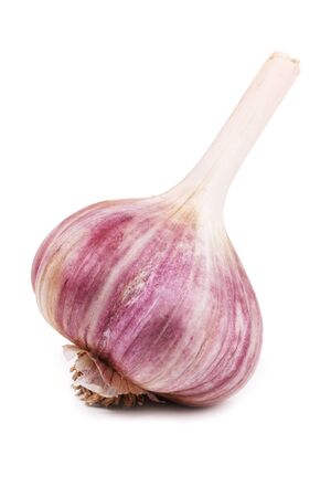 The head of dry mature garlic on a white background Stock Photo - 11160779