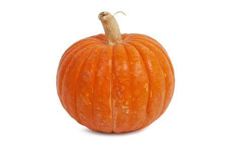 sulcus: Small orange pumpkins ripe trim on a white background