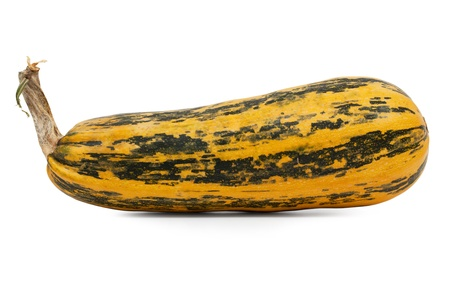 sulcus: The long ripe zucchini and a little spotted on a white background