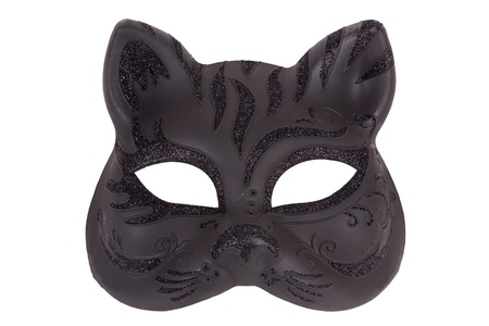 Mask in the form of the muzzle a cat on a white background