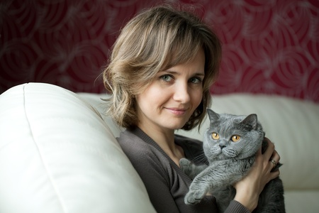 Pretty young woman playing with a gray cat British breed