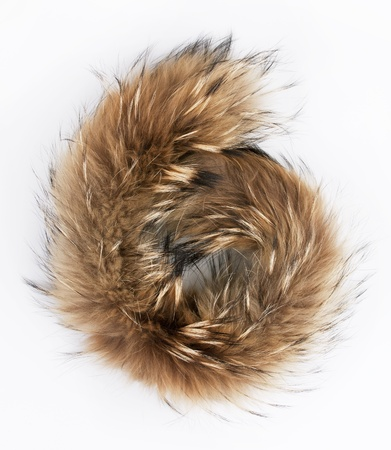 pelage: Fluffy folded piece of fur on a gray background