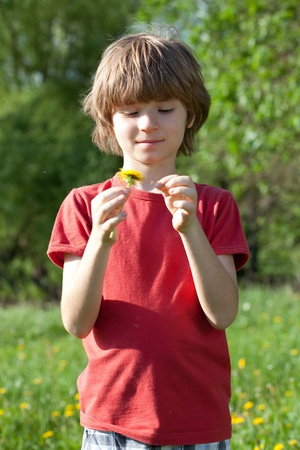 The Boy in the T-shirt and a dandelion in the hands of