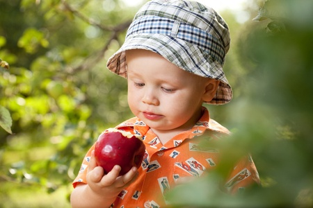 Little boy in panama with red ripe apple Stock Photo