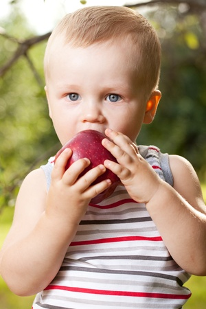 Kid is trying to have a ripe red apple photo