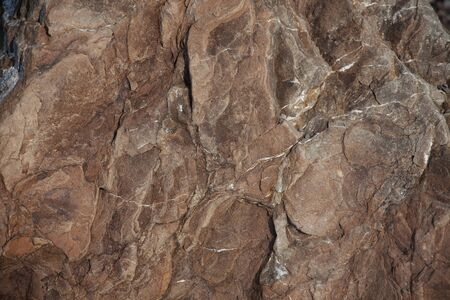 protuberances: Brown stone with protuberances on the surface