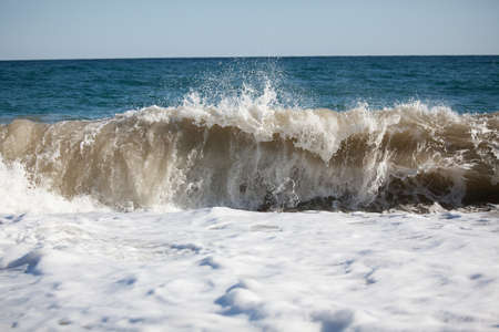 briny: Sea wave rolls on beach on a summer day