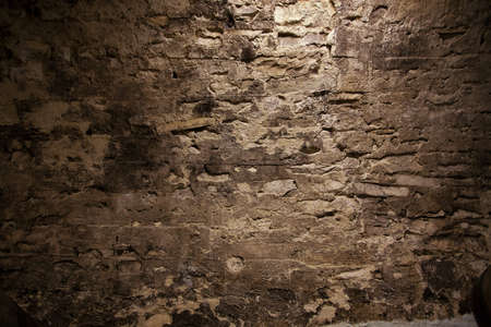 mustiness: Stone stucco wall with mold in the cellar