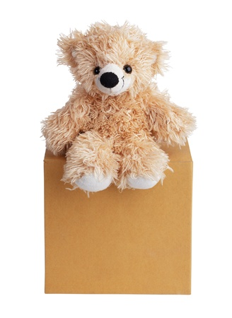 carboard box: Teddy bear sits on a carboard box