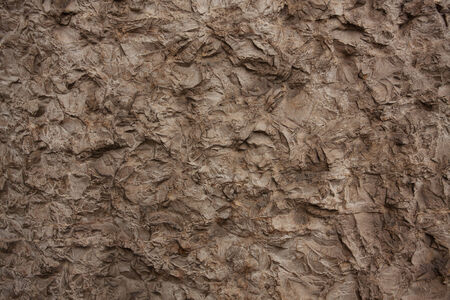 Surface of the gray stone with many irregularities Stock Photo - 22829697